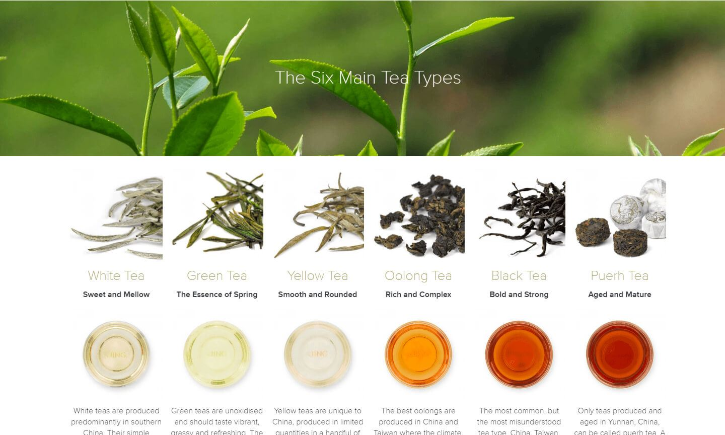 JING Tea Types